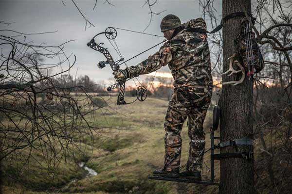 bow-hunter-in-tree